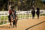 Wyong announces $6m Track & Training Master Plan 3